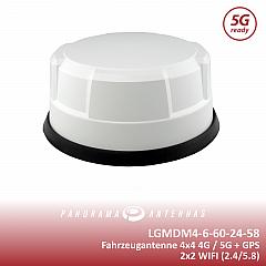 LGMDM4-6-60-24-58 Top Shopbild.png